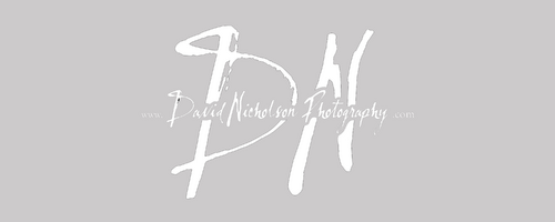 David Nicholson Photography - Los Angeles Wedding & Portrait Photographer - Nationwide